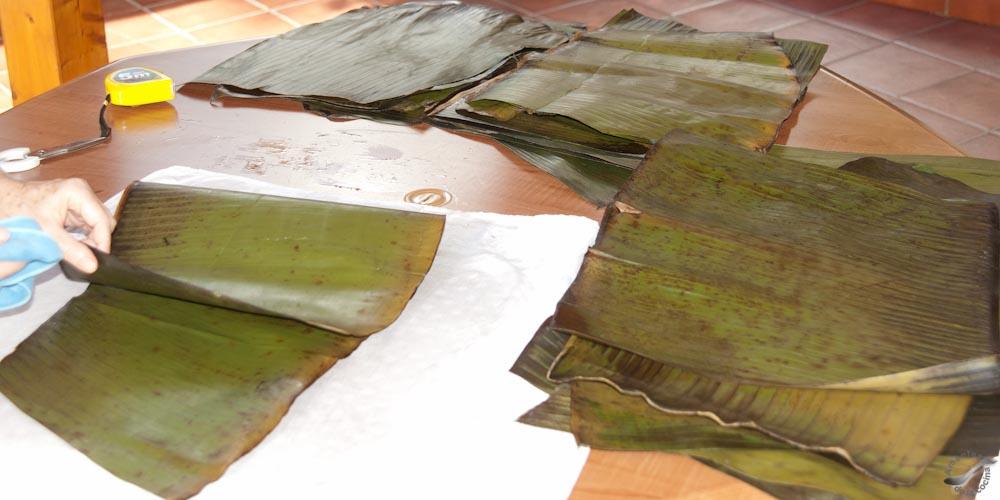 Hallaca venezolana - Limpieza y corte de las hojas de plátano