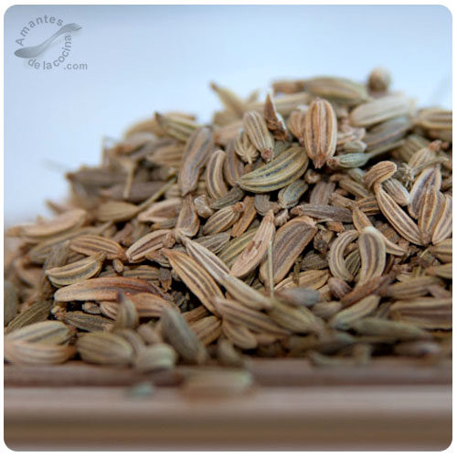 Semillas de hinojo (Hierba santa, Fenollo)
